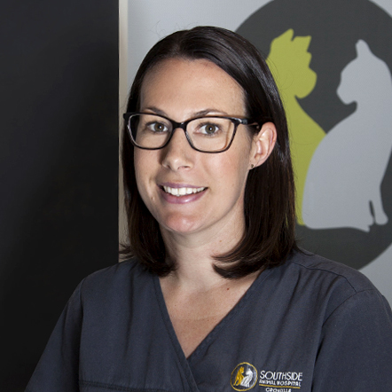 Hollie – Practice Manager and Senior Vet Nurse